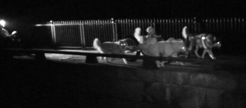 C&O Canal - Monocacy Aqueduct