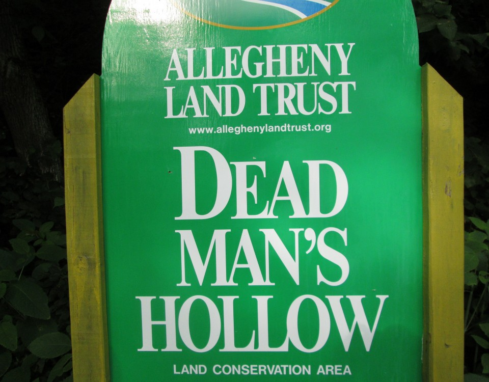 Dead Man's Hollow