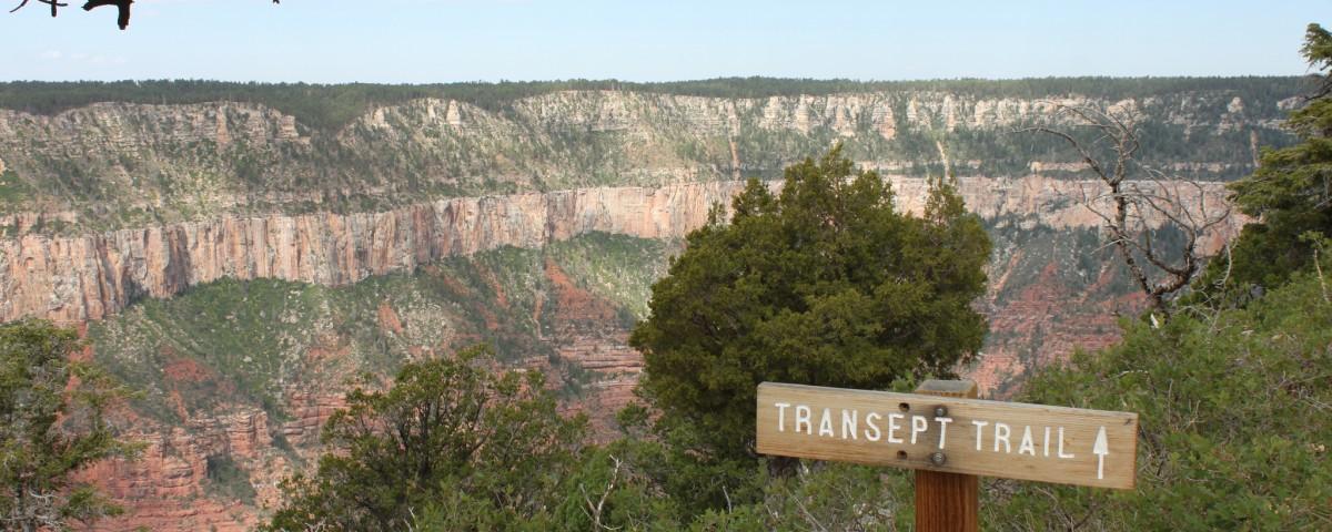Wailing Woman of Transept Trail