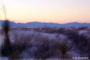 (images:84792417@N00/flickr) White Sands