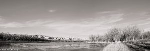(images:62089820@N03/flickr) Platte River