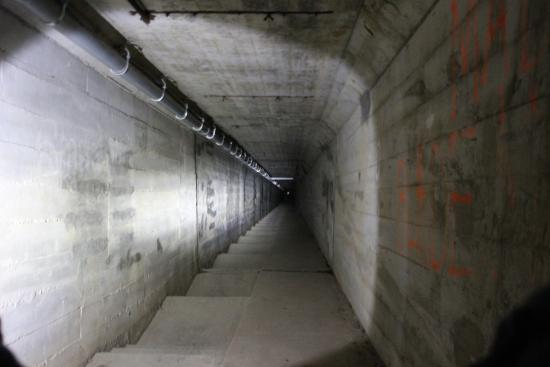 A photo showing the tunnel where corpses were transported from the Waverly Hills Sanatorium