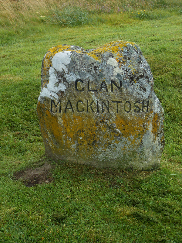 One of the stones at the Culloden Moore where the dead were buried