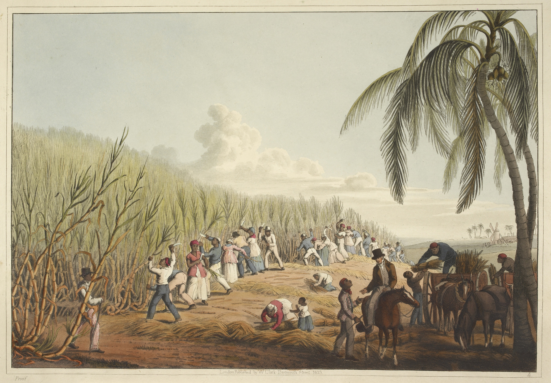 An illustration of the sugar plantation at the Eden Brown Estate