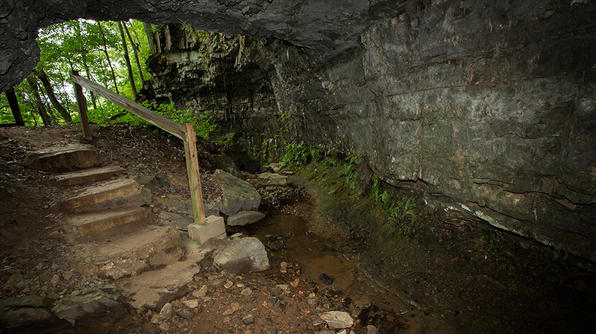 The stairs going down the entrance of the Bell Witch Cave